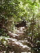 Reef Bay Trail on St. John